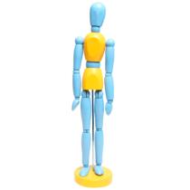 manequim-articulado-color-blue-yellow-sinoart-sfm018-cc-a